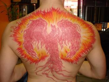 jason cavo phoenix
